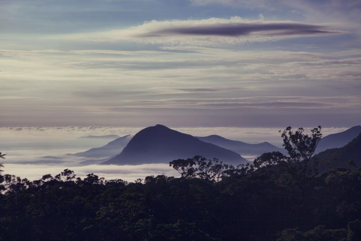 Fog over glasshouse mountains